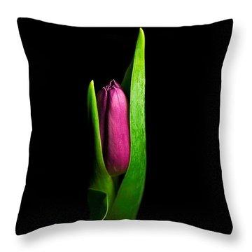Artsy Tulip Throw Pillow by Elsa Marie Santoro