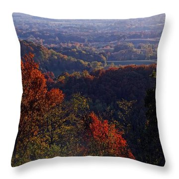 Throw Pillow featuring the photograph As Far As The Eye Can See by Steven Lebron Langston