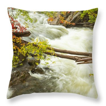 As The River Flows Throw Pillow by Karol Livote
