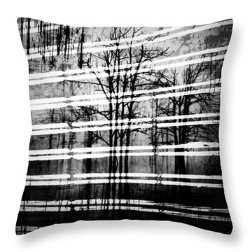 As The Swamp Sleeps Throw Pillow by Jerry Cordeiro