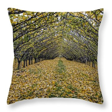 Asian Pear Trees Throw Pillow