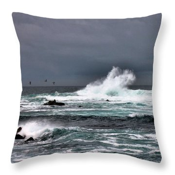 Asilomar 2007 Throw Pillow