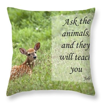 Ask The Animals Throw Pillow by Jeannette Hunt