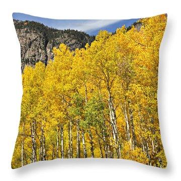 Aspen 7 Throw Pillow by Marty Koch