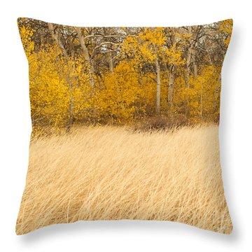 Aspen And Grass Throw Pillow