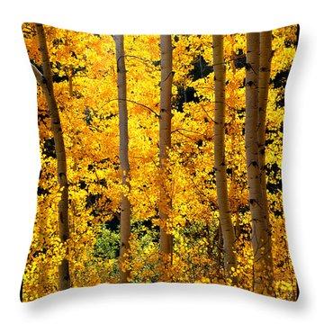 Aspen Family Throw Pillow by Susanne Still