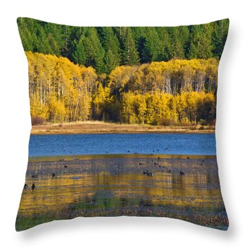 Aspen Gate Throw Pillow