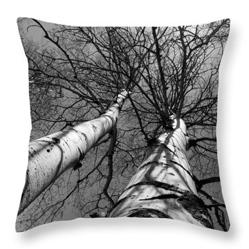 Throw Pillow featuring the photograph Aspen Glow by Colleen Coccia