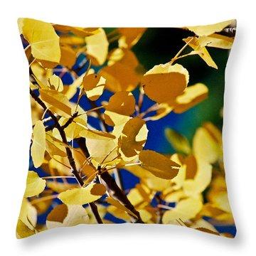 Aspen Gold Medallions Throw Pillow