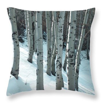 Aspen Have Eyes Throw Pillow