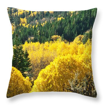 Aspen Hunt Throw Pillow