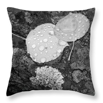 Aspen Leaves In The Rain Throw Pillow by Dorrene BrownButterfield