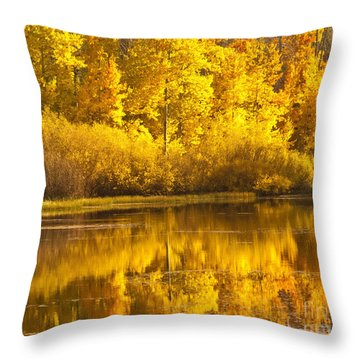 Aspen Pond Throw Pillow