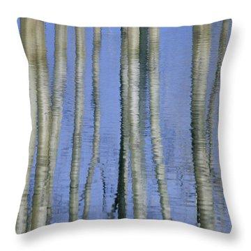Aspen Poplar Trees Reflected In Spring Throw Pillow by Darwin Wiggett