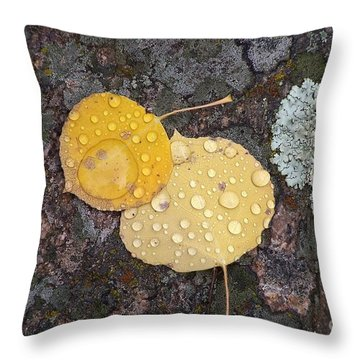 Aspen Tears Throw Pillow by Dorrene BrownButterfield