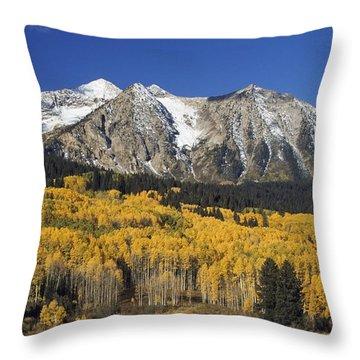 Aspen Trees In Autumn, Rocky Mountains Throw Pillow by David Ponton