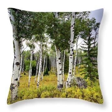 Aspen Trees In Jackson Hole Wyoming Throw Pillow