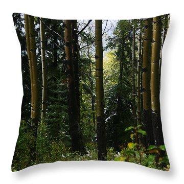 Aspens Banff National Park Throw Pillow