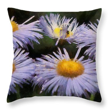 Asters Painterly Throw Pillow by Ernie Echols