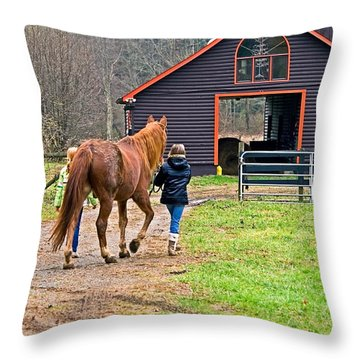 At Day's End Throw Pillow by Susan Leggett