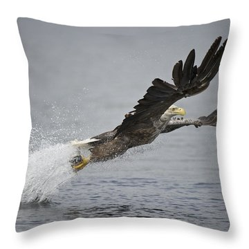 At Full Stretch Throw Pillow