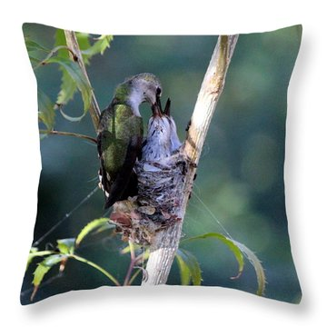 At Last Throw Pillow by Jo Sheehan