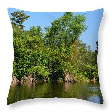 Atchafalaya Basin 46 Throw Pillow by Maggy Marsh