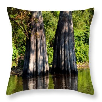 Atchafalaya Basin 53 Throw Pillow