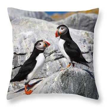 Atlantic Puffins Throw Pillow by Bruce J Robinson