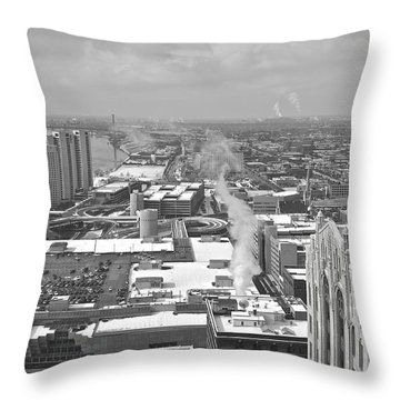 Atop The Guardian  Throw Pillow by Michael Peychich