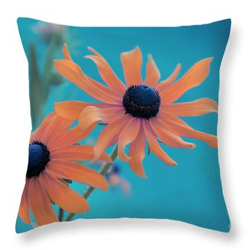 Attachement - S02cz Throw Pillow by Variance Collections
