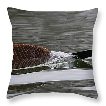 Throw Pillow featuring the photograph Attack Of The Canadian Geese by Elizabeth Winter