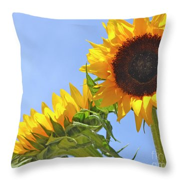 August Sunshine Throw Pillow by Traci Cottingham