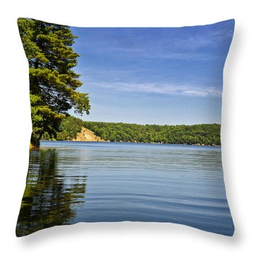 Ausable River In June Throw Pillow