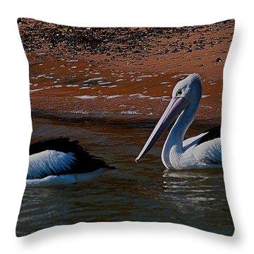 Australian Pelicans Throw Pillow