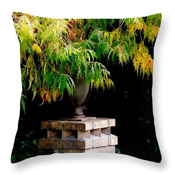 Throw Pillow featuring the photograph Autumn 2 by Tanya  Searcy
