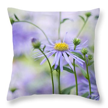 Autumn Asters Throw Pillow by Jacky Parker