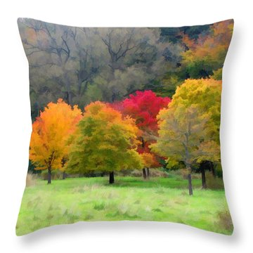 Throw Pillow featuring the painting Autumn At Kiwanis Park 7981 by Maciek Froncisz