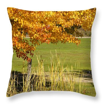 Autumn At The Schoolground Throw Pillow by Mick Anderson