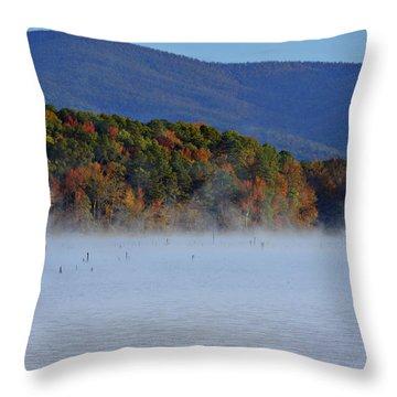 Autumn Backdrop Throw Pillow by Douglas Barnard
