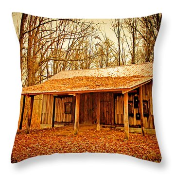 Throw Pillow featuring the photograph Autumn Barn by Mary Timman