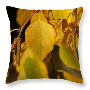 Autumn Birch In Southern Oregon Throw Pillow by Mick Anderson