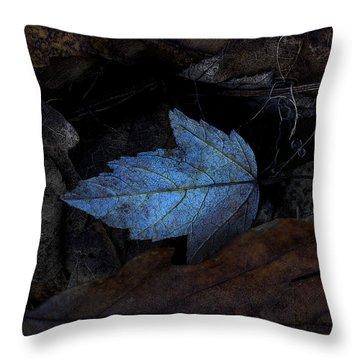 Autumn Blue Throw Pillow by Ron Jones