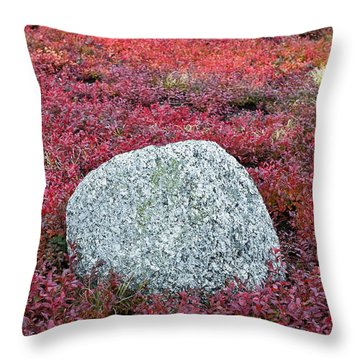 Autumn Blueberry Field Throw Pillow by John Greim