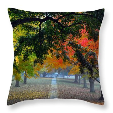 Autumn Canopy Throw Pillow