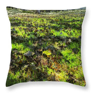 Autumn Colors Throw Pillow by Anne Mott