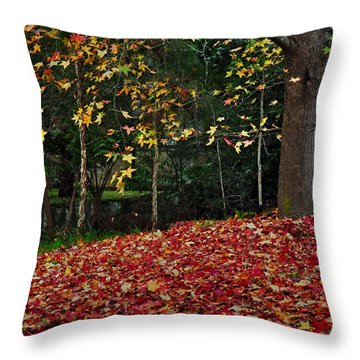 Autumn Colors Throw Pillow by Kaye Menner