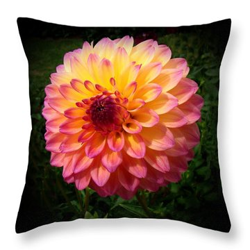 Autumn Colors Throw Pillow by Nick Kloepping