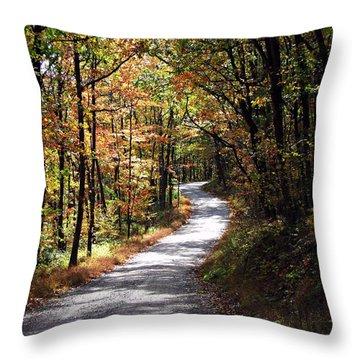 Autumn Country Lane Throw Pillow by David Dehner
