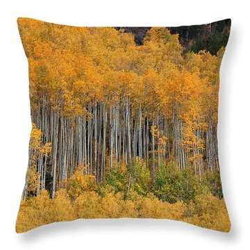 Throw Pillow featuring the photograph Autumn Curtain by Jim Garrison